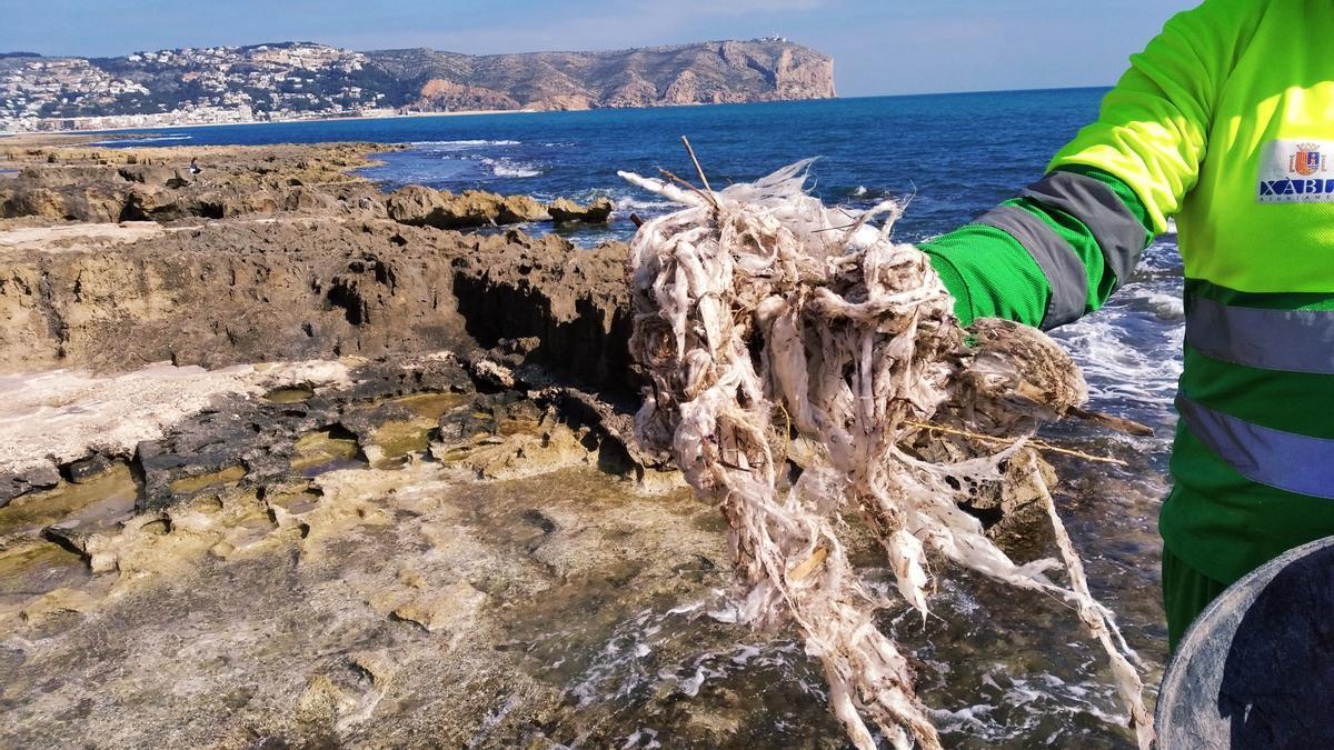 Un manojo de contaminantes toallitas retirado esta mañana del litoral de rocas de Xàbia