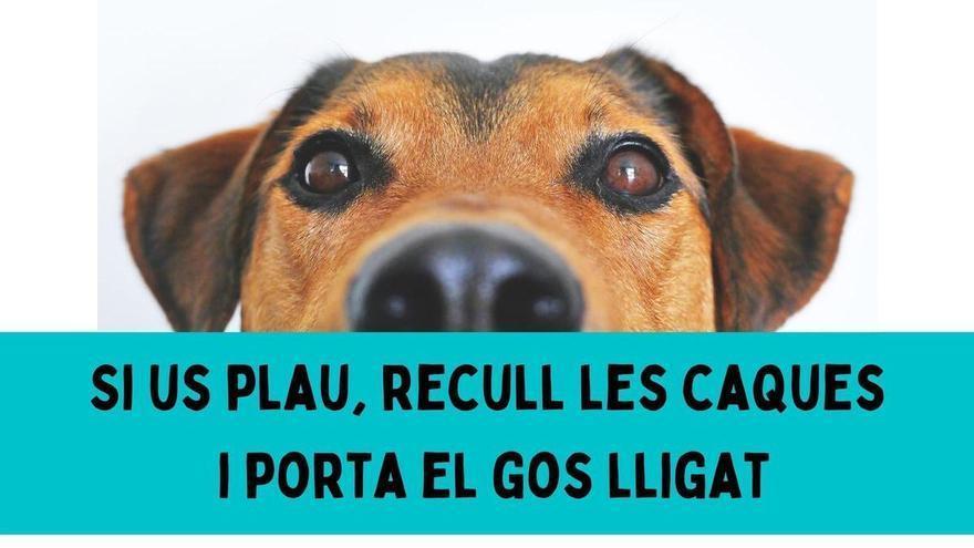 «El gos és teu, el poble és de tots», campanya a Garriguella