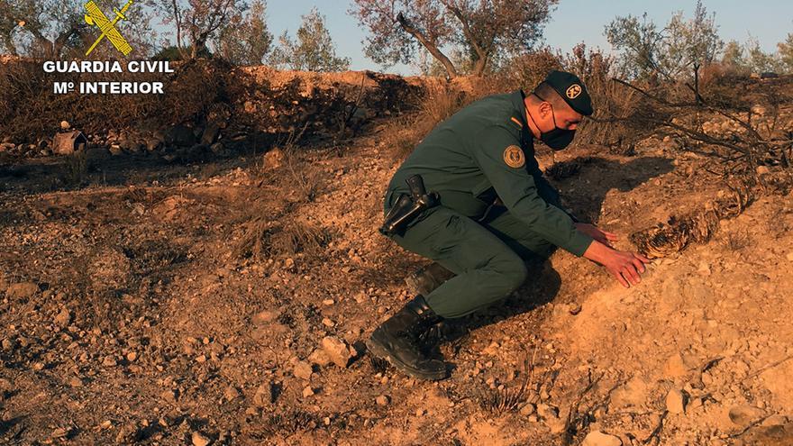 Investigado por originar un incendio forestal en Barinas