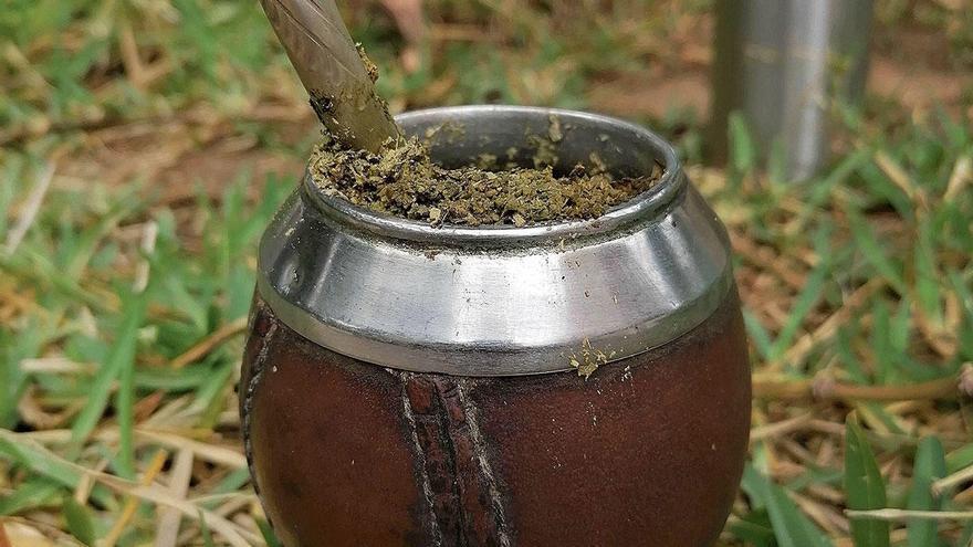 Trend-Getränk auch auf Mallorca: Mate-Tee für Anfänger