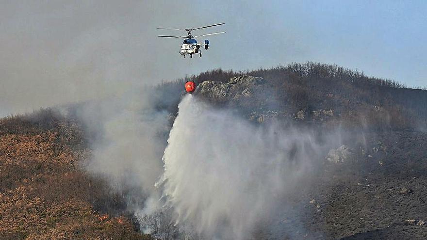 Medios aéreos asturianos intervienen contra un fuego en un robledal leonés