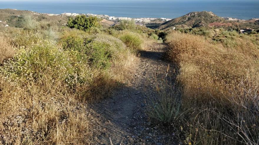 Nuevo sendero entre el Peñón del Cuervo y Olías