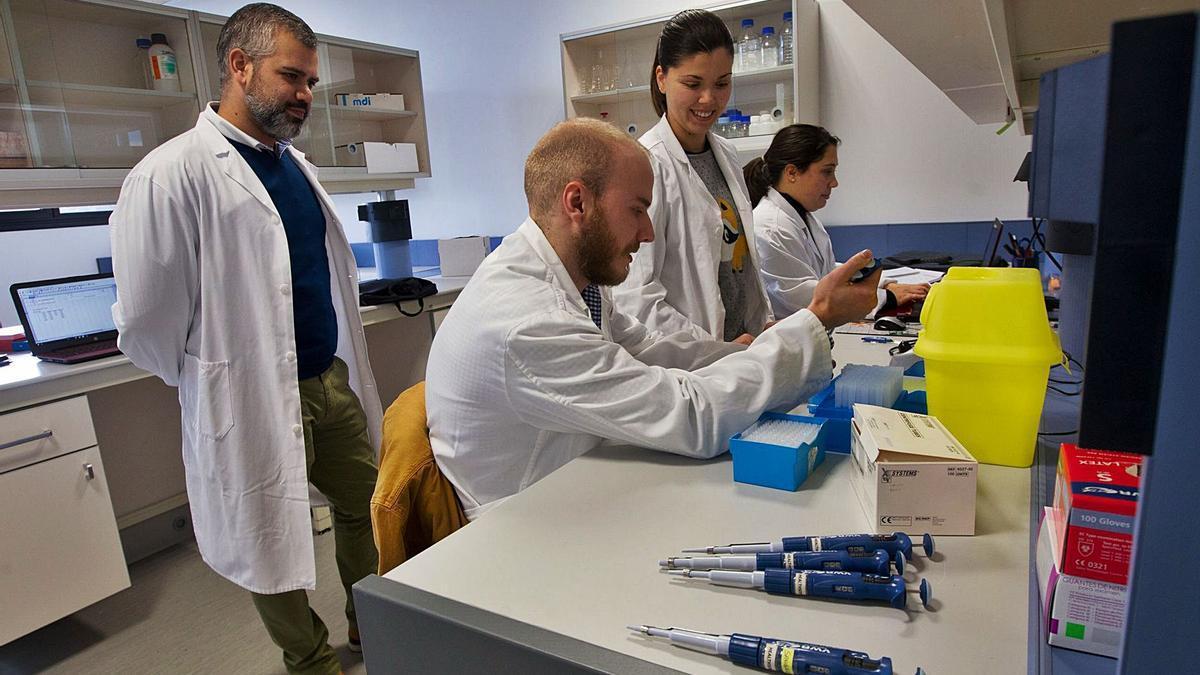 El equipo de Healthens, en el vivero de La Corredoria. | Luisma Murias