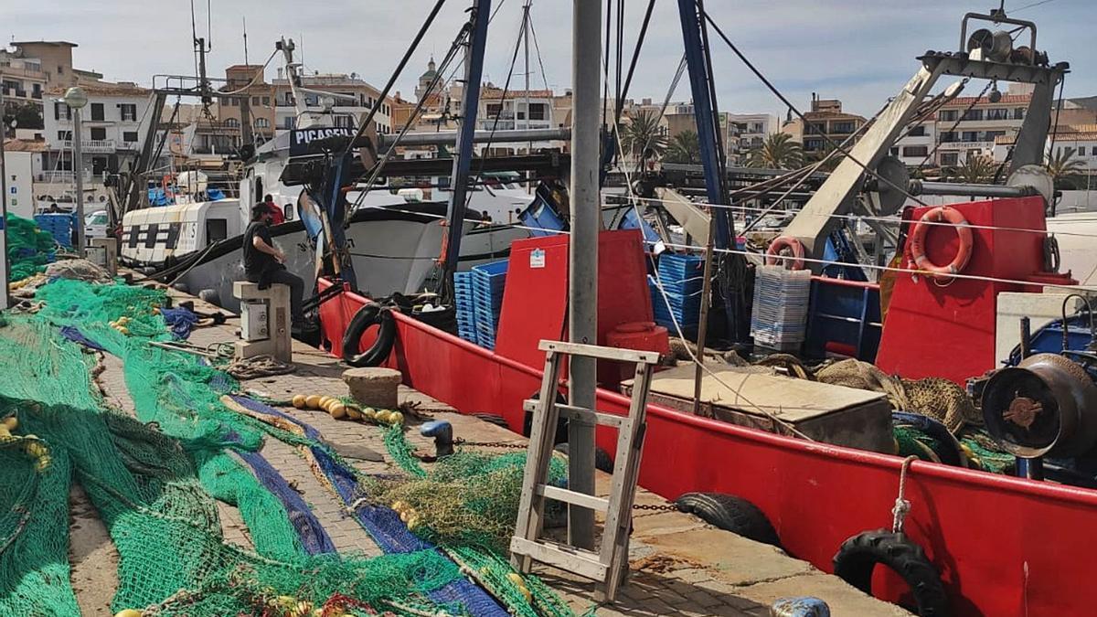 Los pescadores de embarcaciones de arrastre en el puerto de Cala Rajada. | BIEL CAPÓ