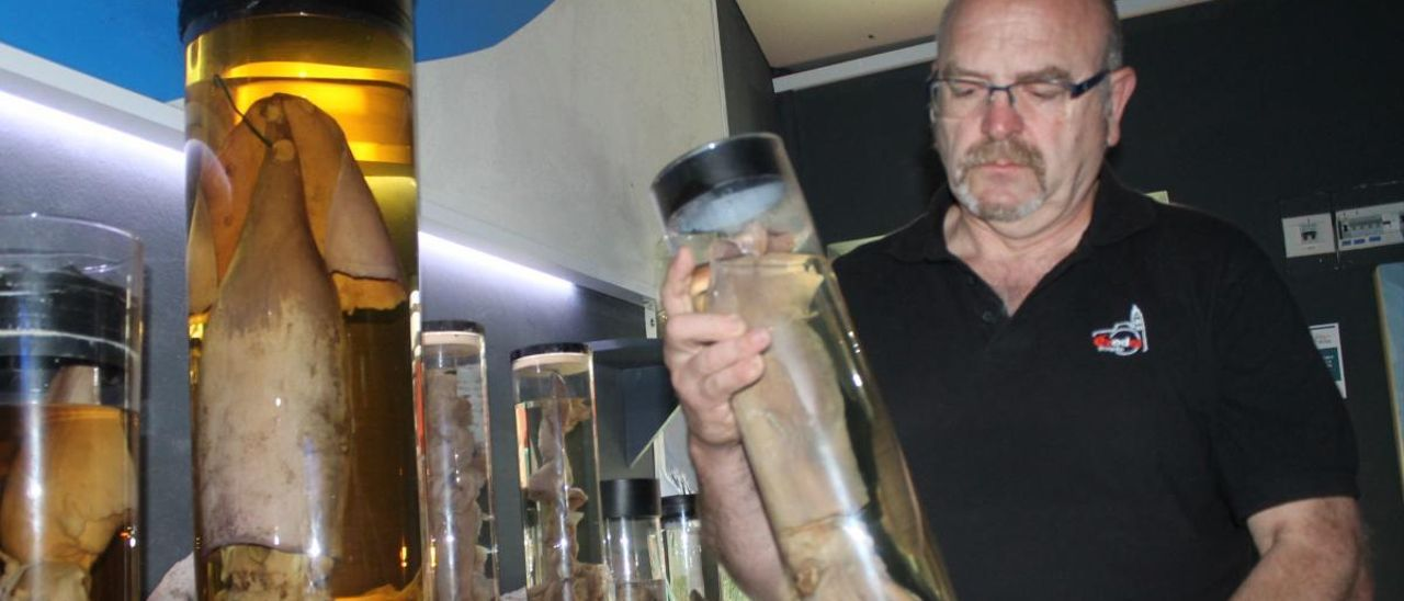 Luis Laria, con un ejemplar de calamar gigante, en una imagen de archivo.
