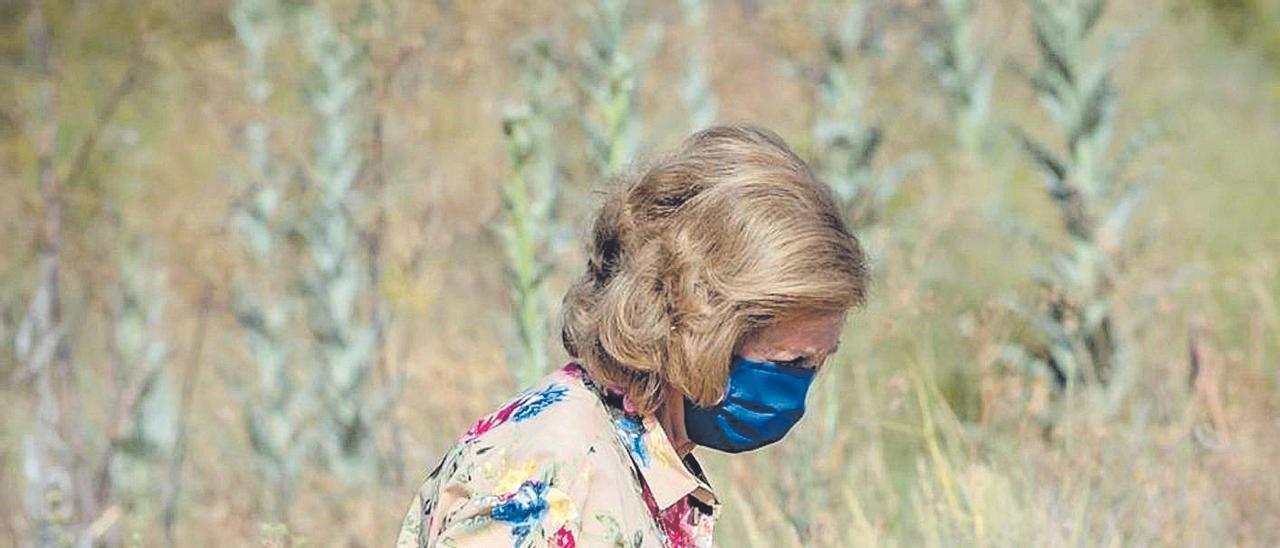 La reina emérita doña Sofía participó como una voluntaria más recogiendo basura.