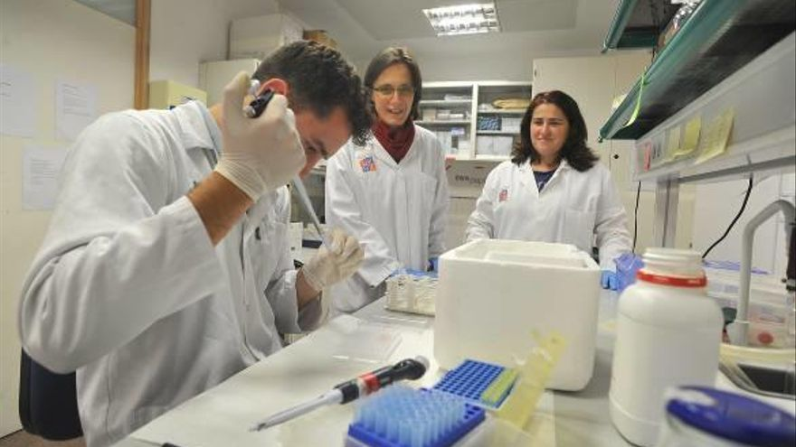 El instituto biotecnológico de la UMH afianza tres proyectos europeos y busca el sello de excelencia