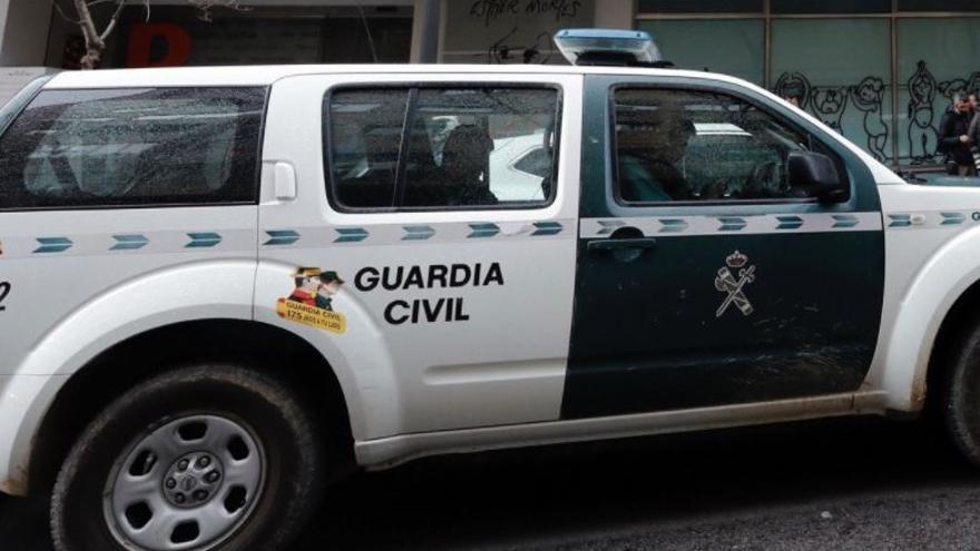 Dos detenidos tras robar más de 250 cipreses en Canals