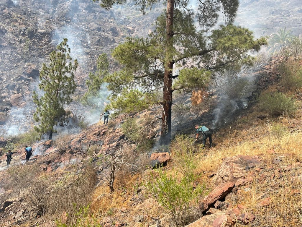 Incendio en la presa del Mulato