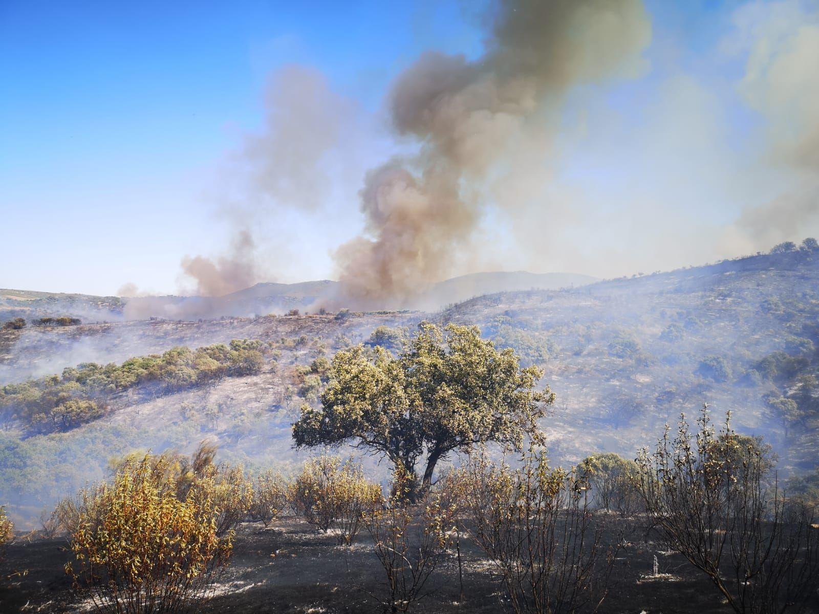 Imágenes del incendio de Peraleda de San Román