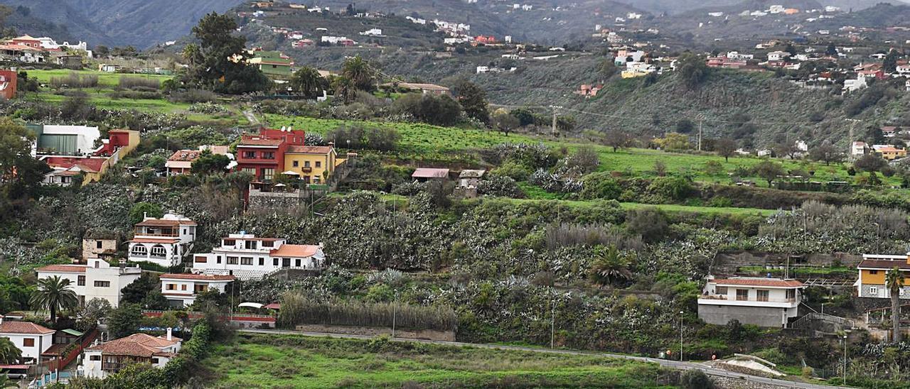 Vista de la entrada al muncipio de Santa Brígida . | | LP/DLP