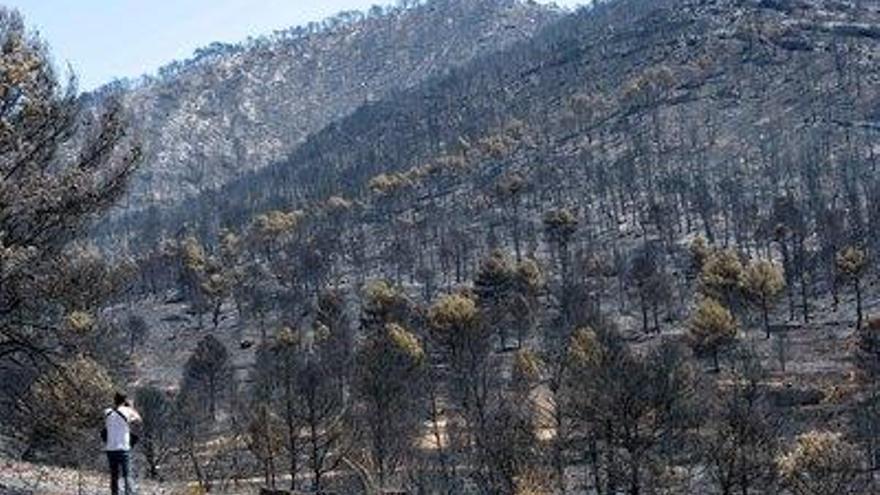 El temporal agrava el riesgo de erosión de la zona incendiada en Beneixama
