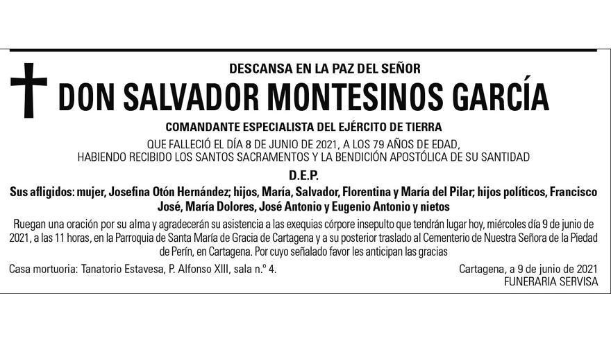 D. Salvador Montesinos García