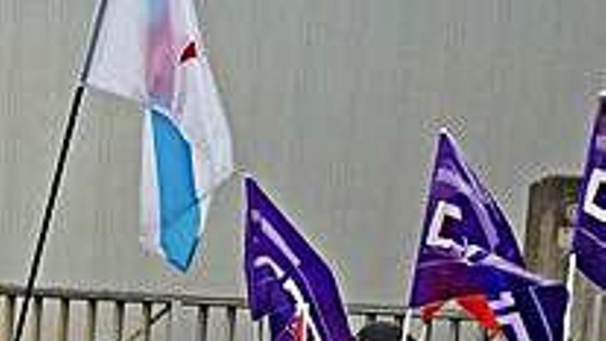 El administrador concursal decide el despido del total de la plantilla de Isidro de la Cal