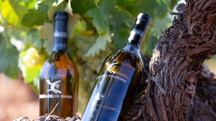 Convocada la XXII edición de los premios Espiga Vino DO Ribera del Guadiana