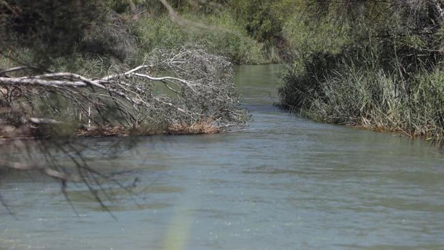Localizan el cuerpo del niño que se lanzó en colchoneta a un río en Valencia
