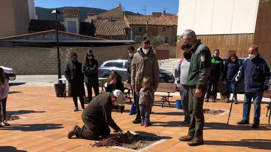 Villanueva de Viver celebra el Día de los Bosques
