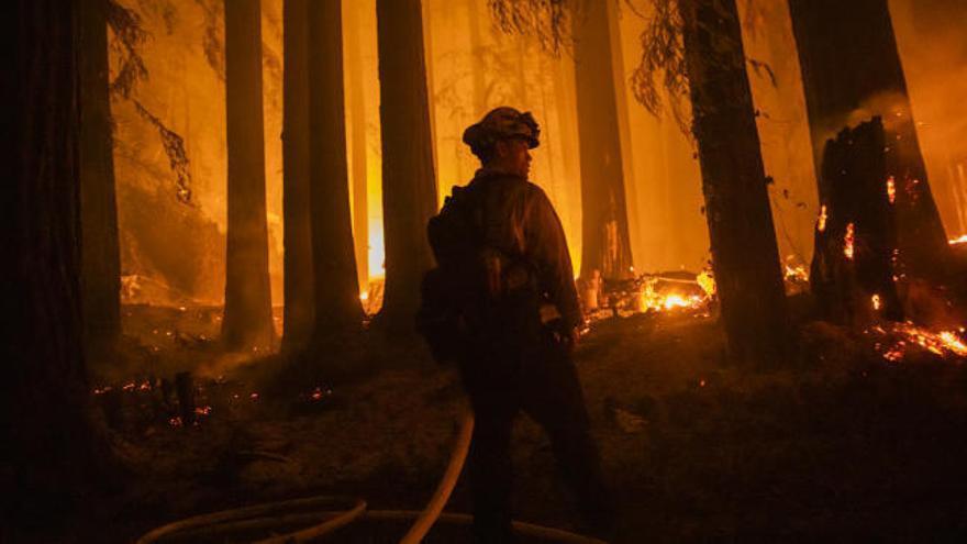 Los incendios en California dejan seis muertos y casi 200.000 evacuados