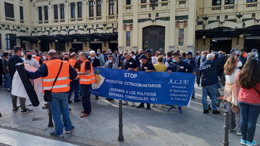 Agricultores de Castellón exigen en València más contundencia contra el 'cotonet'
