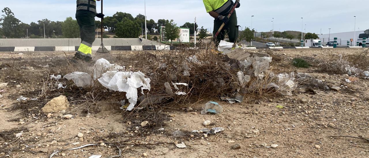 Limpieza intensiva en la entrada a Crevillent tras los múltiples restos de basura