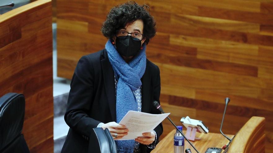 """La """"autotraducción"""", polémica alternativa  para garantizar el uso del asturiano en la Junta"""