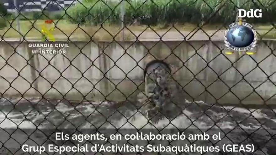 Vídeo| Investigació per delictes de contaminació marina