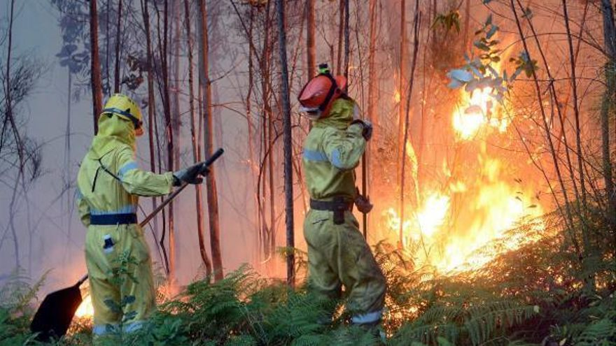 Al banquillo por no tomar precauciones en una quema forestal que acabó en incendio