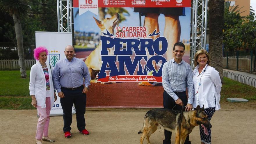 Abierto el plazo de inscripción de la primera carrera solidaria para perros