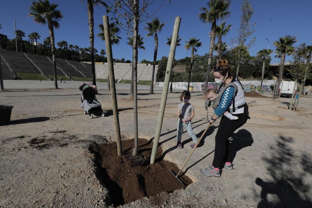 Siembra de árboles en el parque de sa Riera de Palma