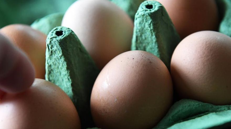 Sanidad llama a la calma y afirma que la 'crisis del huevo' no afecta a España