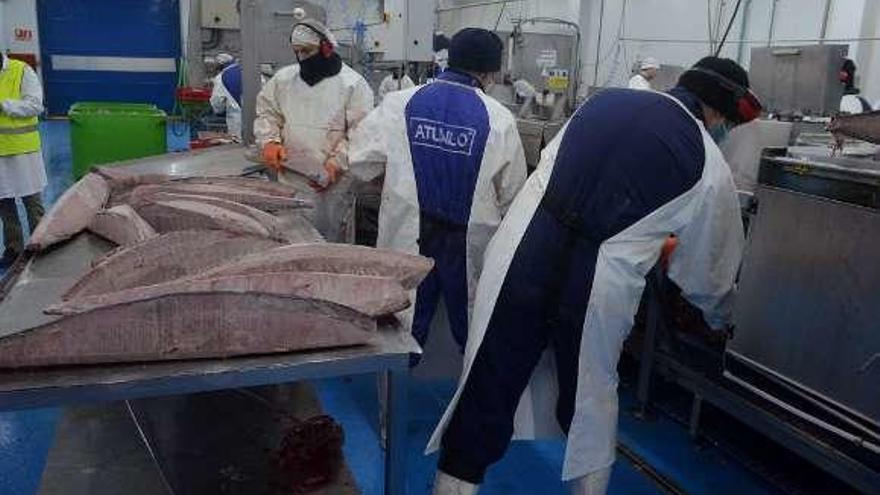 La viguesa Atunlo se alía con Scanfisk para la producción y venta de atún en toda la UE