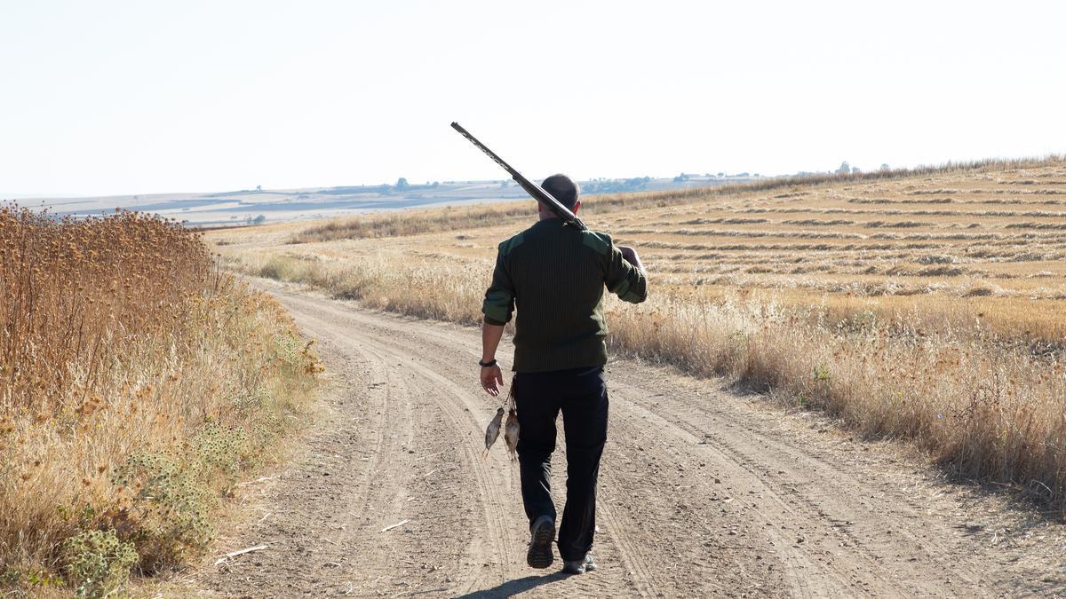 Un cazador pasea, escopeta en mano, por un camino.