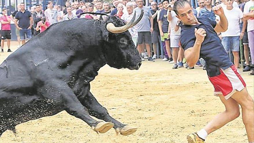 Betxí confirma actos taurinos en sus fiestas de septiembre