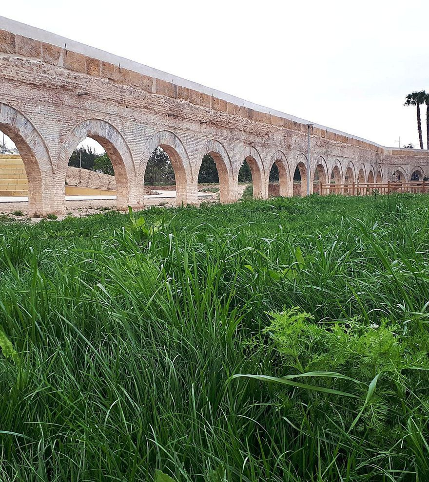 Alcantarilla, donde nace la huerta murciana
