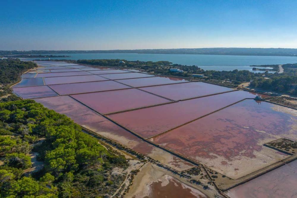 La recuperación de las salinas en Formentera
