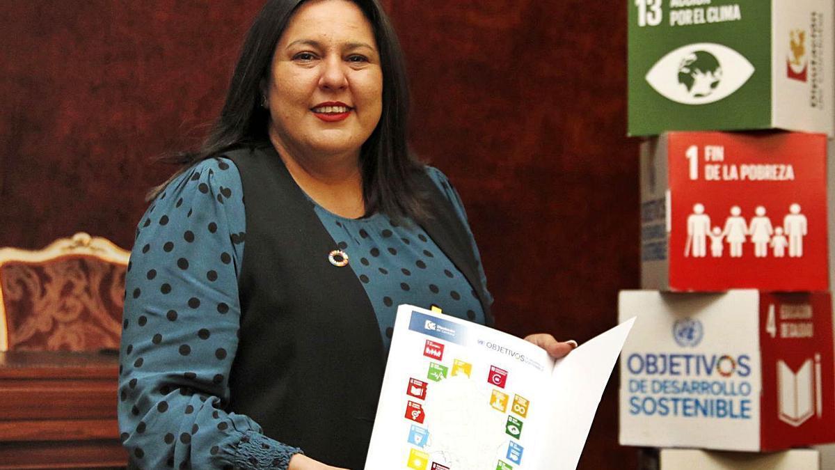 Dolores Amo, en el salón de plenos de la Diputación, junto al esquema de los ODS. | A.J. GONZÁLEZ