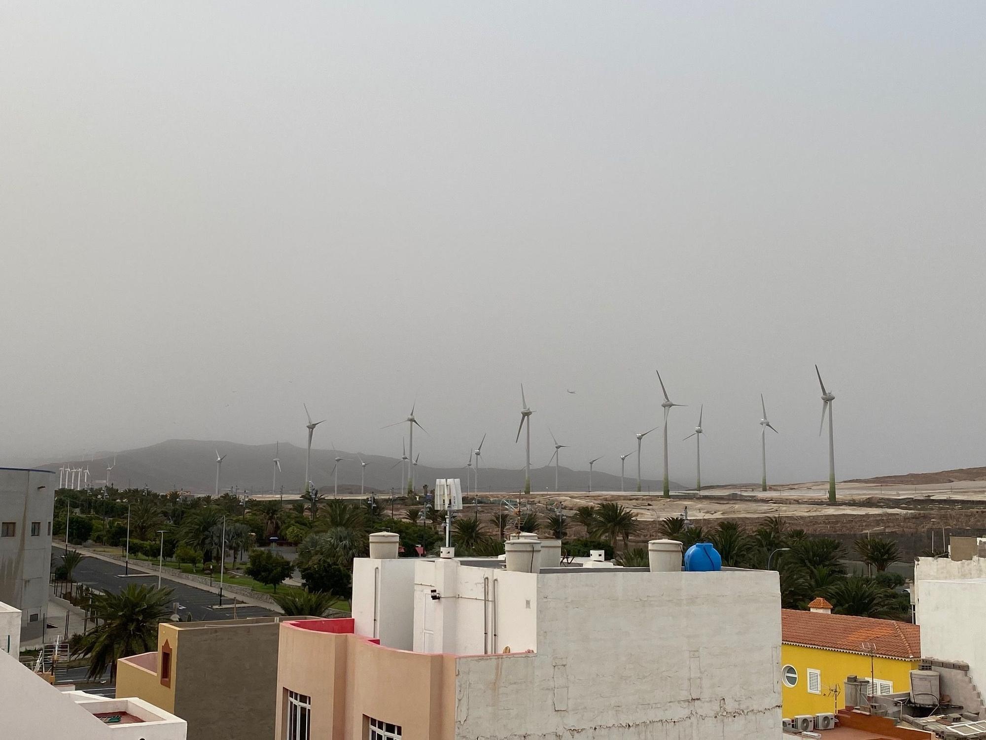 Calima en el sur de Gran Canaria (25/03/2021)