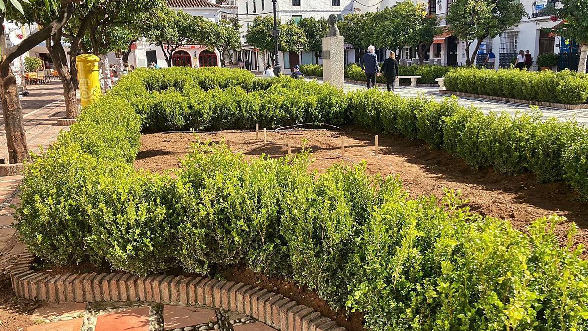 Una de las jardineras de la plaza de Los Naranjos, en el centro urbano de Marbella