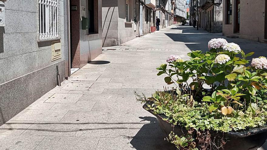 Las polémicas jardineras de O Forte