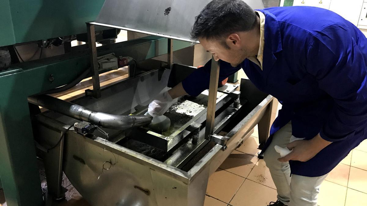 Crean un sistema automatizado para el control de producción y humedad que reduce el gasto energético