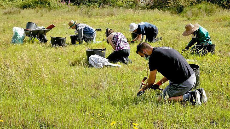 La Diputación financia un plan para conservar hábitats en la Reserva