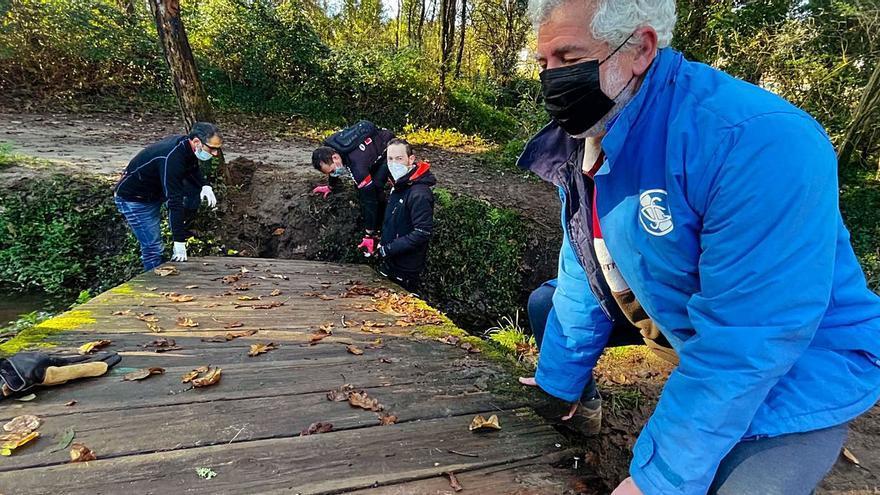 Deportistas de la Gimnástica recolocan pasarelas de madera en el río Os Gafos