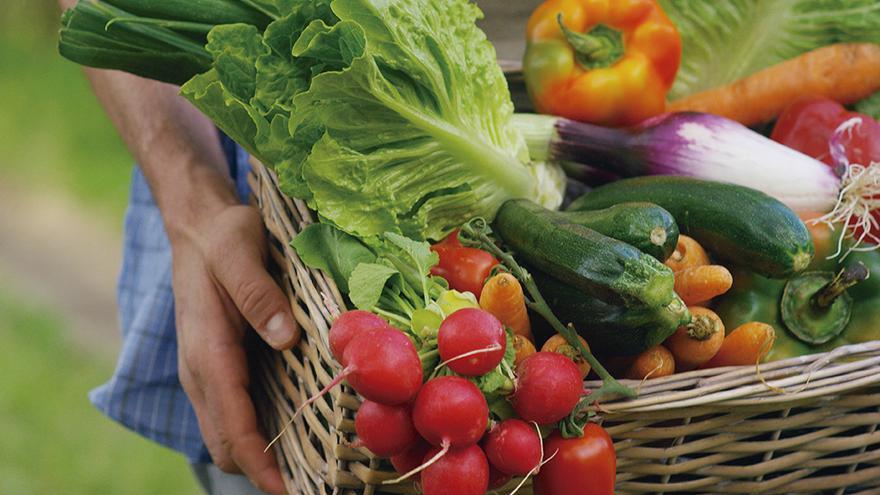 Entidades agrarias y ecologistas piden ante el Ayuntamiento más puntos de venta agroecológicos