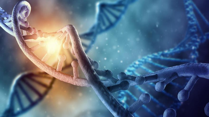 Un estudio revela que la población del sur de España casi no tiene ADN africano