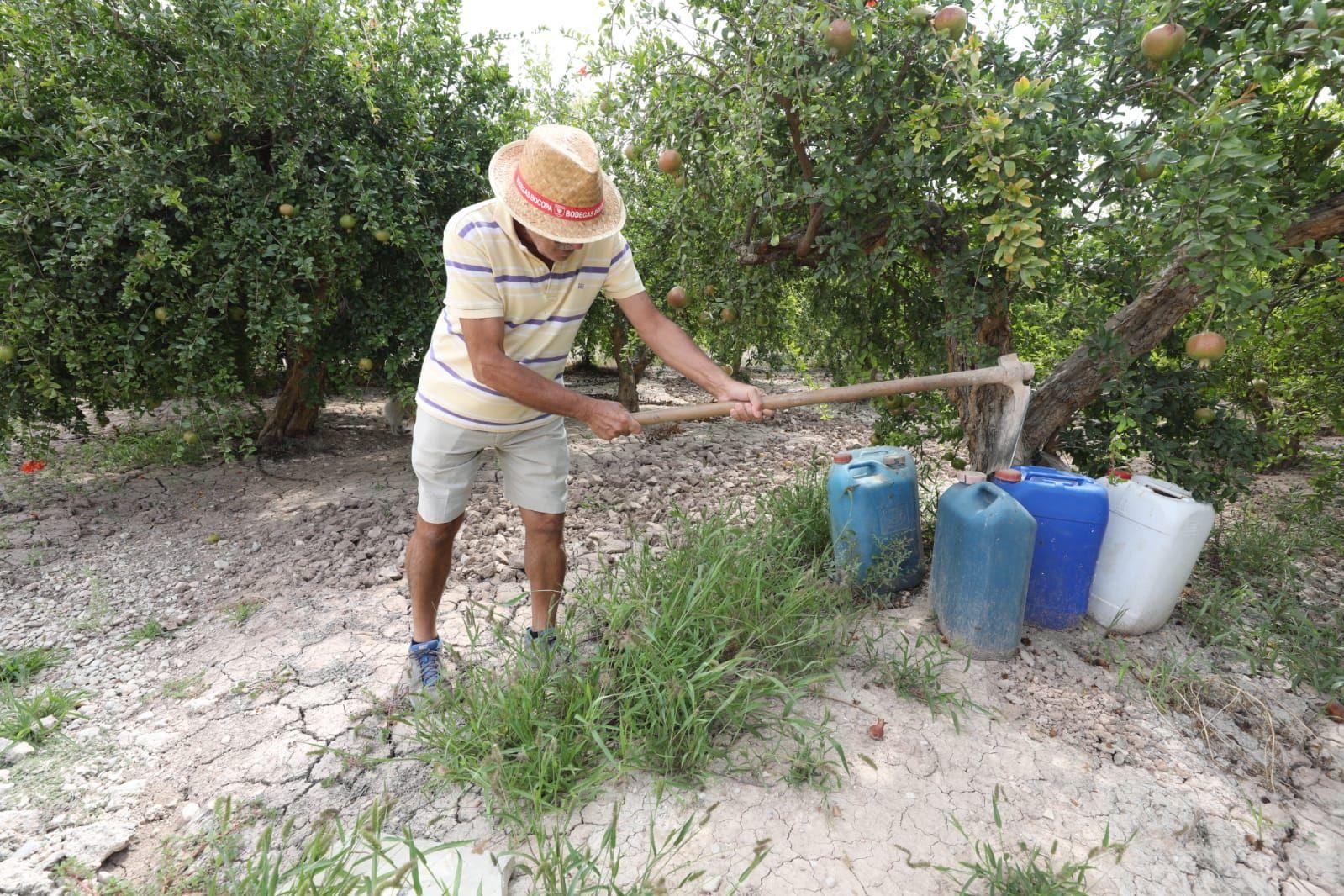 Un agricultor prepara sus tierras para recibir agua del Tajo