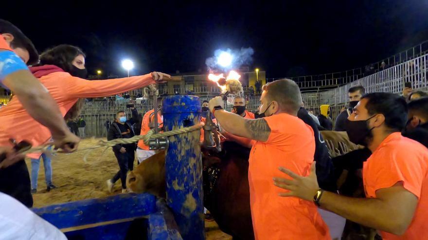 Las polémicas imágenes del 'bou embolat' en Vila-real pese al coronavirus