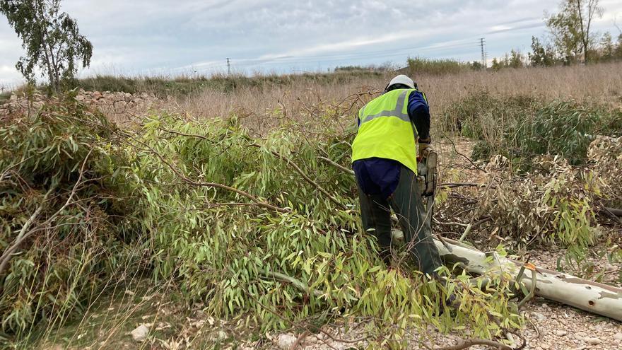La CHJ comienza a regenerar el cauce del río Magro en Carlet