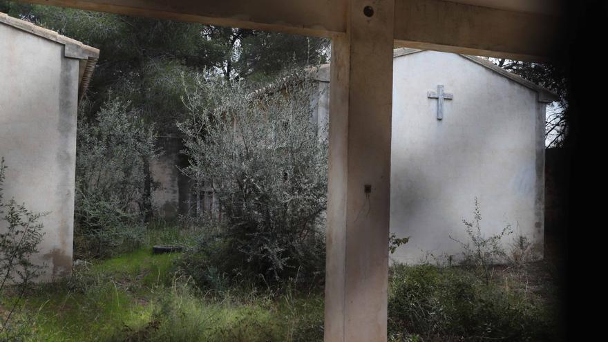El cementerio abandonado de Moncada: así está el camposanto más muerto de Valencia