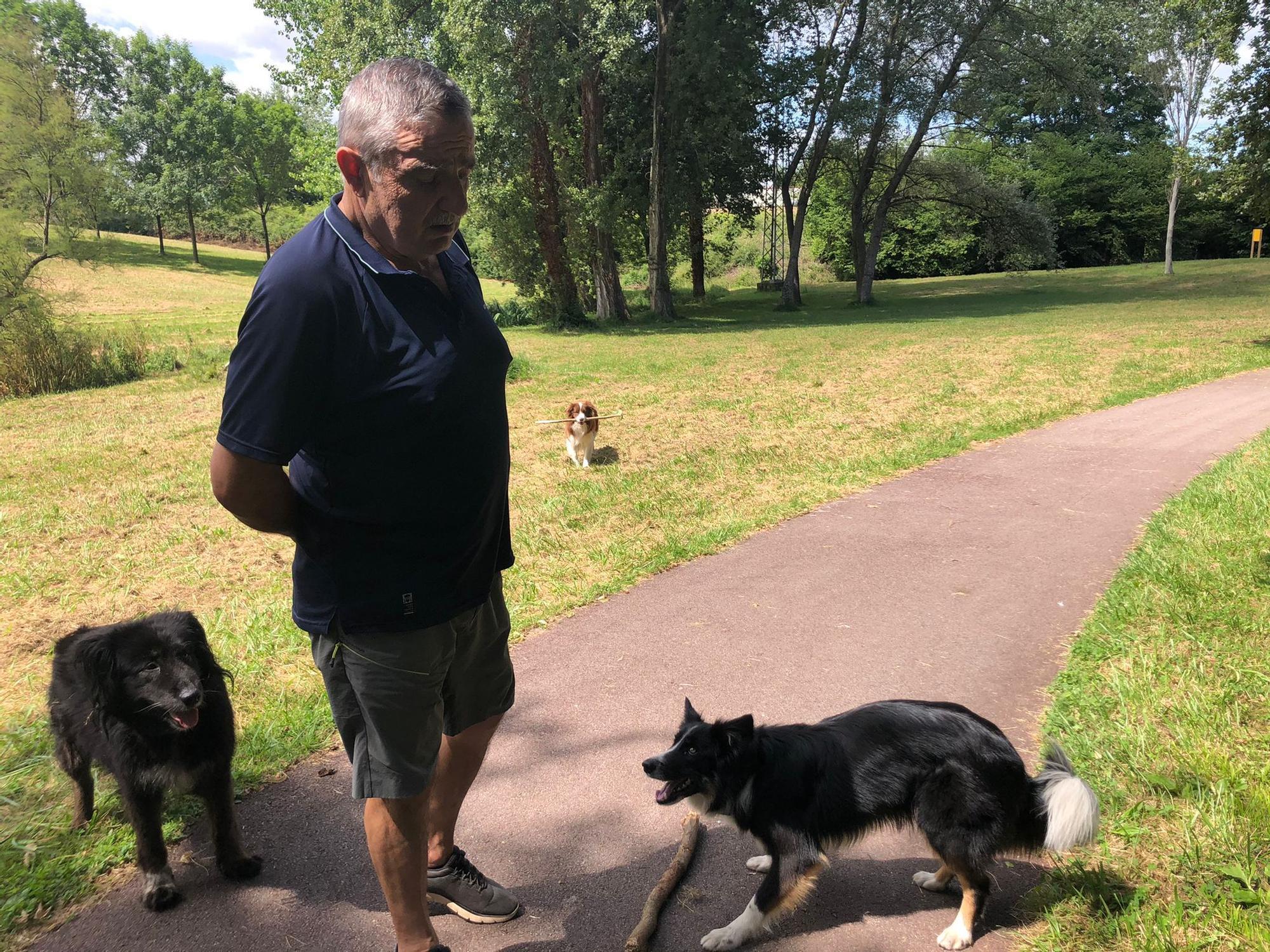 Alfredo Quiñones y sus tres perros, Kira, Rocky y Cloe.jpeg