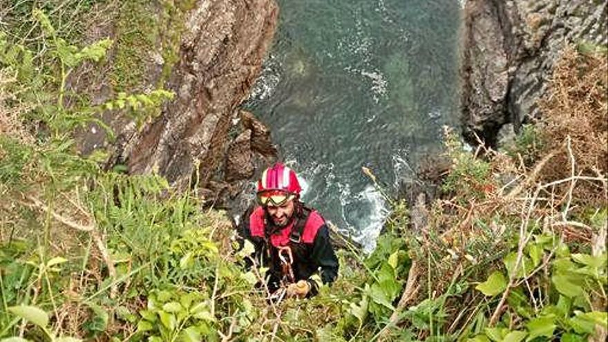 Emergencias salva a un perro de un acantilado en Dexo tras doce horas de trabajo